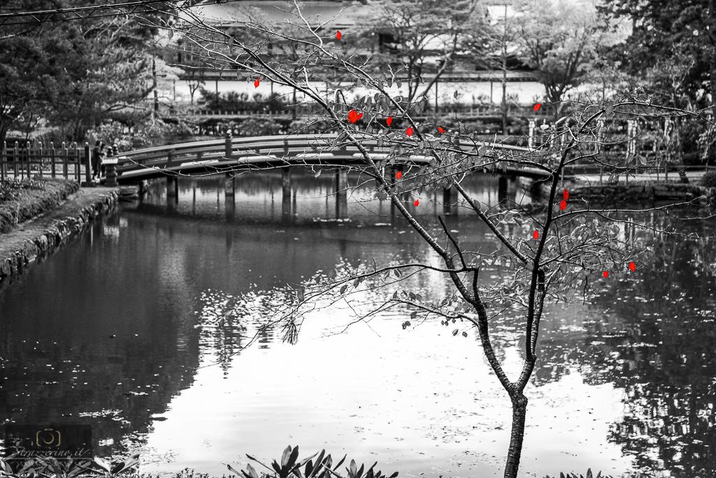 Japan_20151030-088-Modifica